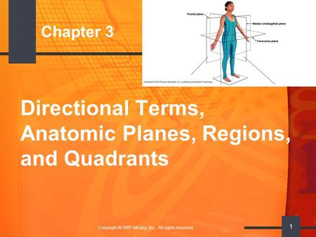 Copyright © 2005 Mosby, Inc. All rights reserved. 1 Chapter 3 Directional Terms, Anatomic Planes, Regions, and Quadrants.