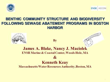1 BENTHIC COMMUNITY STRUCTURE AND BIODIVERSITY FOLLOWING SEWAGE ABATEMENT PROGRAMS IN BOSTON HARBOR BENTHIC COMMUNITY STRUCTURE AND BIODIVERSITY FOLLOWING.