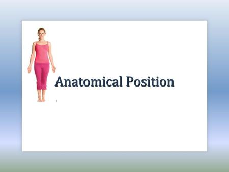 "Anatomical Position. What is it? The anatomical position is: To be in correct anatomical position, the body must meet 3 criteria: ""the universal accepted."