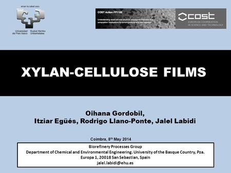 XYLAN-CELLULOSE FILMS Biorefinery Processes Group Department of Chemical and Environmental Engineering. University of the Basque Country, Pza. Europa 1,