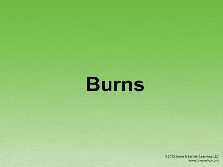 Burns. Types of Burns Thermal (heat) burns Chemical burns Electrical burns © Scott Camazine/Photo Researchers, Inc.