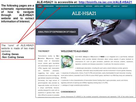 is accessible at: The following pages are a schematic representation of how to navigate through ALE-HSA21.