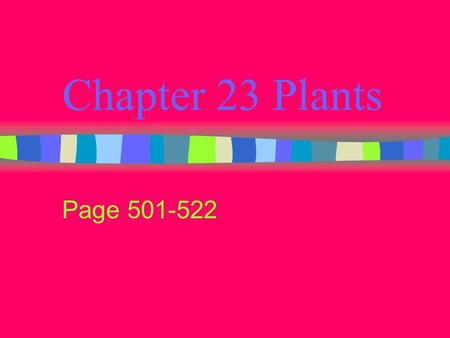 Chapter 23 Plants Page 501-522. Adaptations of Plants Absorbing nutrients Preventing water loss Reproducing on land.