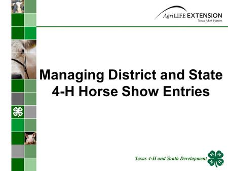 Managing District and State 4-H Horse Show Entries Texas 4-H and Youth Development.