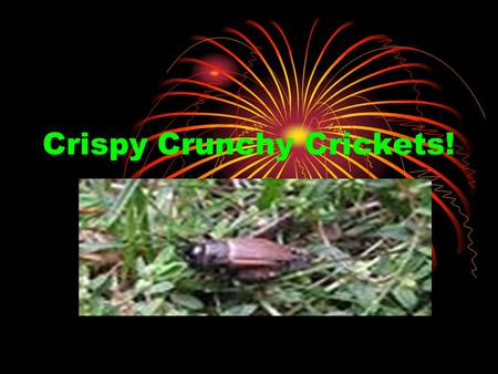 Crispy Crunchy Crickets!. Target Market Chocolate Crickets Demographic-Children Aged 4-13 Behavioral- Halloween candy item to buy. Psychographics- People.