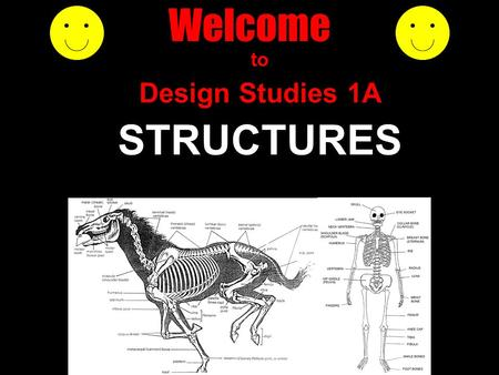 Welcome to Design Studies 1A STRUCTURES. who am I ? Mike Rosenman where am I ? Room 279 contact ? Ph: 9351 5933 Fax: 9351 3031