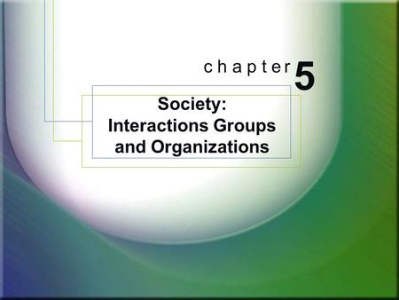 Society: Interactions Groups and Organizations 5 c h a p t e r.