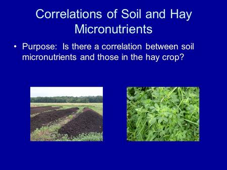 Correlations of Soil and Hay Micronutrients Purpose: Is there a correlation between soil micronutrients and those in the hay crop?