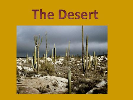 A desert is very sandy land. Deserts are all over the world. Plants and animals live in the desert. Barely anything grows in the desert. The desert.