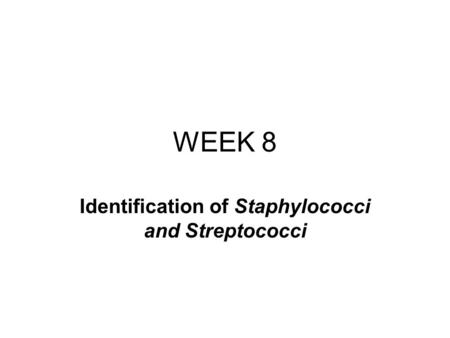 WEEK 8 Identification of Staphylococci and Streptococci.