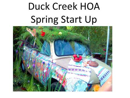 Duck Creek HOA Spring Start Up. Things You Can Do Now for the Summer Season Mower Maintenance Tool Maintenance Irrigation Maintenance Color Beds and Shrubs.