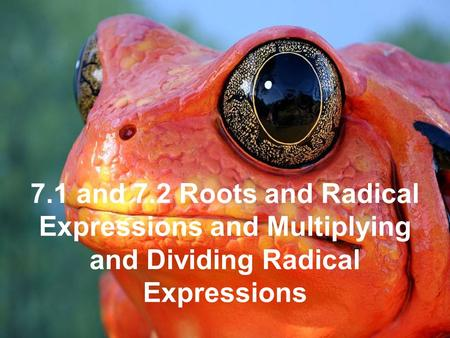 1 7.1 and 7.2 Roots and Radical Expressions and Multiplying and Dividing Radical Expressions.