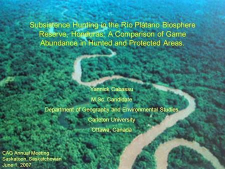 Subsistence Hunting in the Río Plátano Biosphere Reserve, Honduras: A Comparison of Game Abundance in Hunted and Protected Areas. Yannick Cabassu M.Sc.