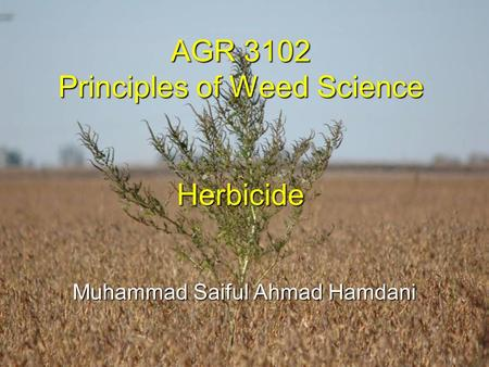 AGR 3102 Principles of Weed Science Herbicide