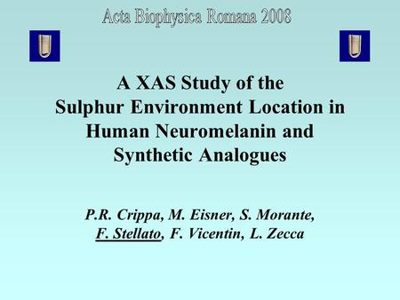 A XAS Study of the Sulphur Environment Location in Human Neuromelanin and Synthetic Analogues P.R. Crippa, M. Eisner, S. Morante, F. Stellato, F. Vicentin,