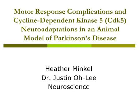 Motor Response Complications and Cycline-Dependent Kinase 5 (Cdk5) Neuroadaptations in an Animal Model of Parkinson's Disease Heather Minkel Dr. Justin.
