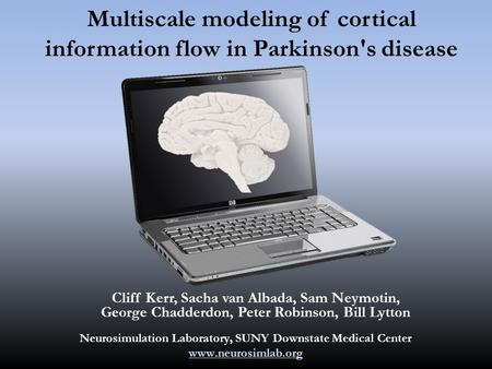 Multiscale modeling of cortical information flow in Parkinson's disease Cliff Kerr, Sacha van Albada, Sam Neymotin, George Chadderdon, Peter Robinson,