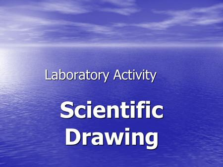 Laboratory Activity Scientific Drawing. This is not an art class… But you can learn to make a scientific drawing by learning two things. But you can learn.
