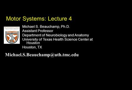 Michael S. Beauchamp, Ph.D. Assistant Professor Department of Neurobiology and Anatomy University of Texas Health Science Center at Houston Houston, TX.