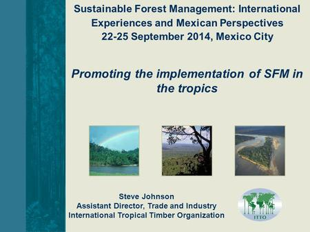 Steve Johnson Assistant Director, Trade and Industry International Tropical Timber Organization Promoting the implementation of SFM in the tropics Sustainable.