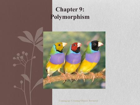 Chapter 9: Polymorphism Coming up: Creating Objects Revisited.