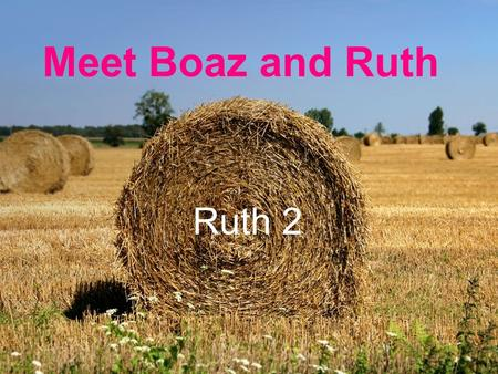 "Meet Boaz and Ruth Ruth 2. Meet Boaz and Ruth – Ruth 2 Chapter starts with Boaz, but we don't meet him till later. Notice nobody calls Naomi ""Mara"" –"