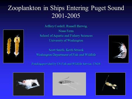 Zooplankton in Ships Entering Puget Sound
