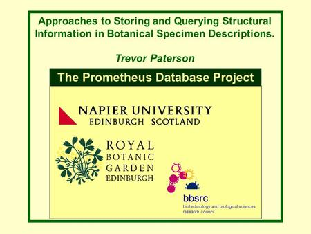 Approaches to Storing and Querying Structural Information in Botanical Specimen Descriptions. Trevor Paterson bbsrc biotechnology and biological sciences.