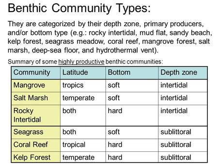 Benthic Community Types: They are categorized by their depth zone, primary producers, and/or bottom type (e.g.: rocky intertidal, mud flat, sandy beach,