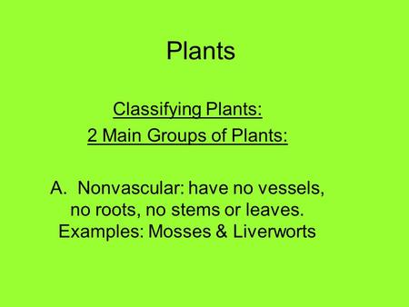 Plants Classifying Plants: 2 Main Groups of Plants: A. Nonvascular: have no vessels, no roots, no stems or leaves. Examples: Mosses & Liverworts.