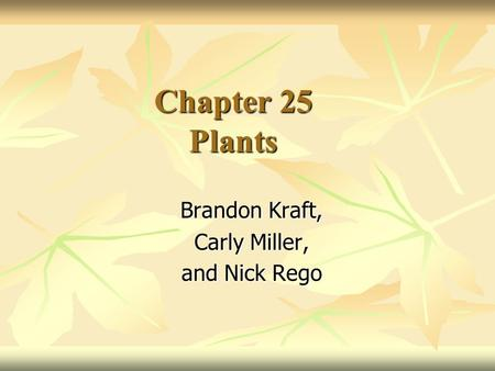 Chapter 25 Plants Brandon Kraft, Carly Miller, and Nick Rego.