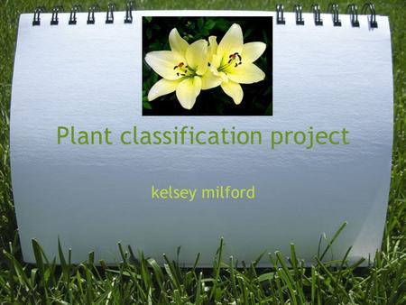 Plant classification project