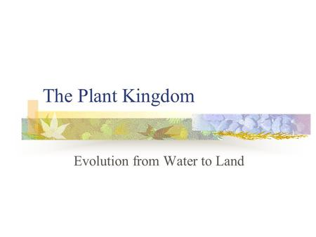 "The Plant Kingdom Evolution from Water to Land. Primitive Plants Were ""aquatic"" – lived in water If salt water, we use the term ""marine"" It is believed."