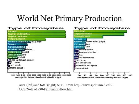 World Net Primary Production Area (left) and total (right) NPP. From  GCL/Notes-1998-Fall/energyflow.htm.