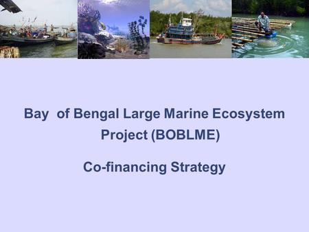 Bay of Bengal Large Marine Ecosystem Project (BOBLME) Co-financing Strategy.