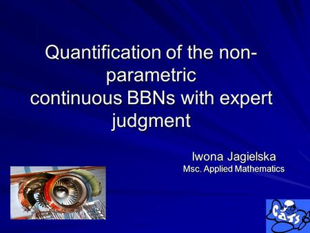 Quantification of the non- parametric continuous BBNs with expert judgment Iwona Jagielska Msc. Applied Mathematics.