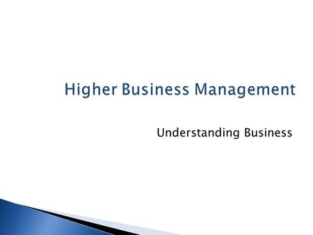 Higher Business Management Understanding Business.