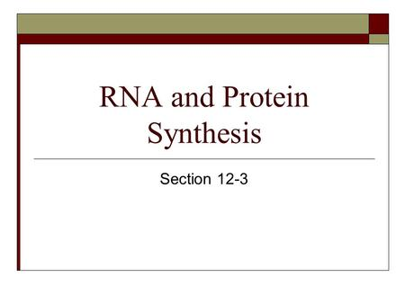 RNA and Protein Synthesis Section 12-3. Objectives for this section  Compare and contrast DNA and RNA  Name the 3 main types of RNA  Describe transcription.