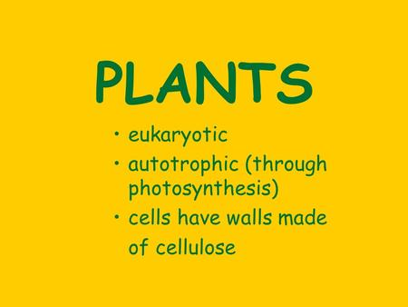 PLANTS eukaryotic autotrophic (through photosynthesis) cells have walls made of cellulose.