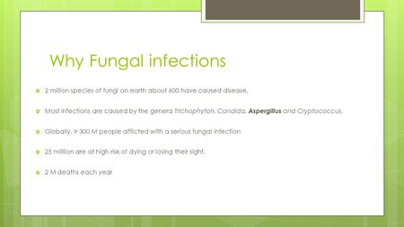 Why Fungal infections  2 million species of fungi on earth about 600 have caused disease.  Most infections are caused by the genera Trichophyton, Candida,