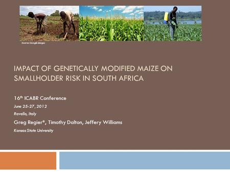 IMPACT OF GENETICALLY MODIFIED MAIZE ON SMALLHOLDER RISK IN SOUTH AFRICA 16 th ICABR Conference June 25-27, 2012 Ravello, Italy Greg Regier*, Timothy Dalton,