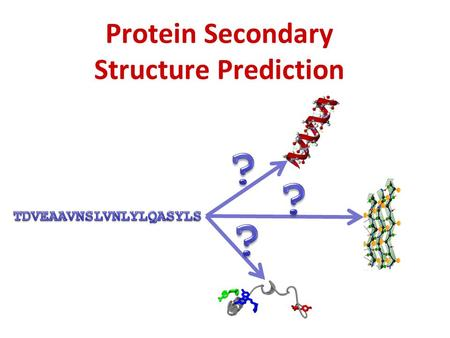 Protein Secondary Structure Prediction. Input: protein sequence Output: for each residue its associated Secondary structure (SS): alpha-helix, beta-strand,