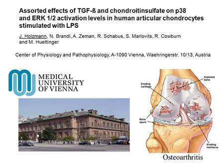 Osteoarthritis Assorted effects of TGF-ß and chondroitinsulfate on p38 and ERK 1/2 activation levels in human articular chondrocytes stimulated with LPS.