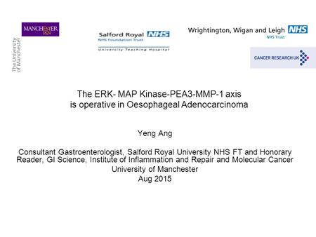 The ERK- MAP Kinase-PEA3-MMP-1 axis is operative in Oesophageal Adenocarcinoma Yeng Ang Consultant Gastroenterologist, Salford Royal University NHS FT.