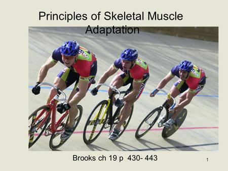 1 Principles of Skeletal Muscle Adaptation Brooks ch 19 p 430- 443.