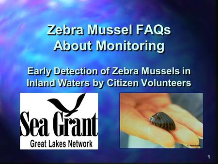"Zebra Mussel FAQs About Monitoring Early Detection of Zebra Mussels in Inland Waters by Citizen Volunteers This presentation is entitled, ""Zebra Mussel."