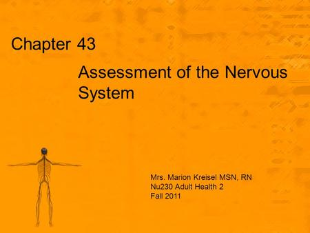 Chapter 43 Assessment of the Nervous System Mrs. Marion Kreisel MSN, RN Nu230 Adult Health 2 Fall 2011.