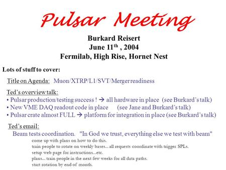 Burkard Reisert June 11 th, 2004 Fermilab, High Rise, Hornet Nest Pulsar Meeting Ted's overview talk: Pulsar production/testing success !  all hardware.