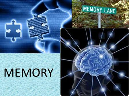 Memory MEMORY. Memory What is the point of learning? Without memories…learning would mean nothing to us, right?