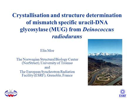 Crystallisation and structure determination of mismatch specific uracil-DNA glycosylase (MUG) from Deinococcus radiodurans Elin Moe The Norwegian Structural.